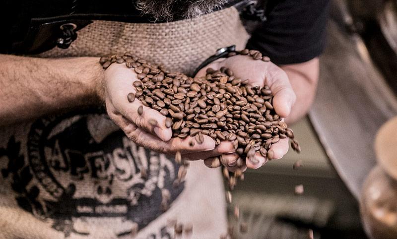 Kaffeebohnen auf den Händen