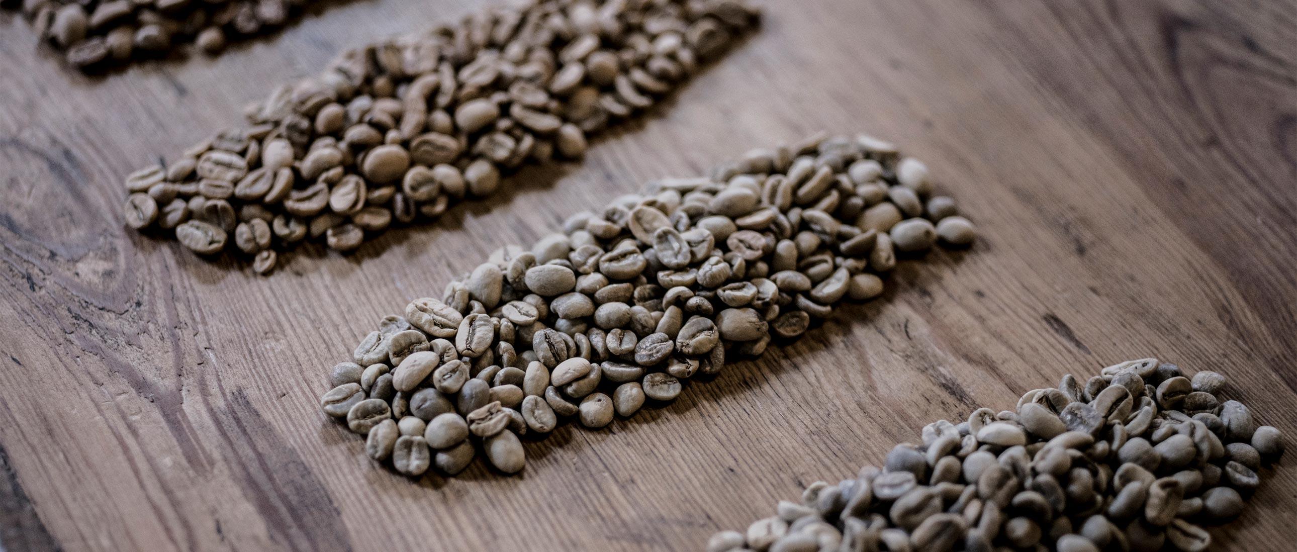 Bringt Sie der Extrakt aus grünen Kaffeebohnen dazu, mehr zu kacken?